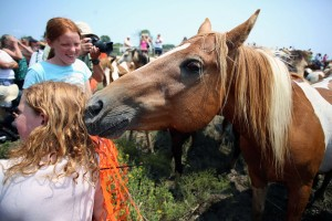 A pony sniffs the back of the head of Abigail Russell, 8, while smiling for a picture as her sister, Emily, 10, from Brookfield, Vermont laughs after the 89th annual Pony Swim to the Island of Chincoteague, Va., on Wednesday, July 30, 2014.