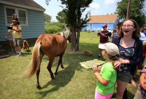 Spectators move to the side as a pony got loose during the Pony Parade as they make their way towards a carnival where spectators can view the ponies before bidding on them the next day to benefit The Chincoteague Volunteer Fire Dept.